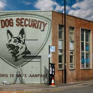 AM Dog Security image 1