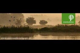 Kom met Hemelvaart dauwtrappen bij de Oostvaardersplassen