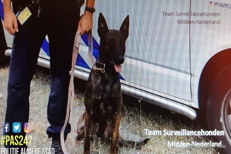 Straatrovers aangehouden na inzet diensthond