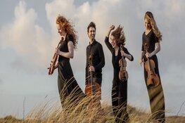 Belinfante Quartet zaterdag 2 november in Goede Rede