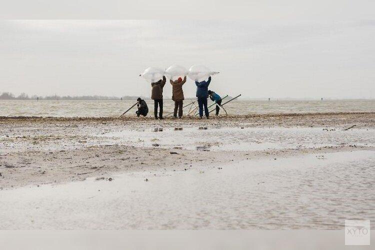 ArtScience studenten werken eerste week van maart op het Almeerderstrand.