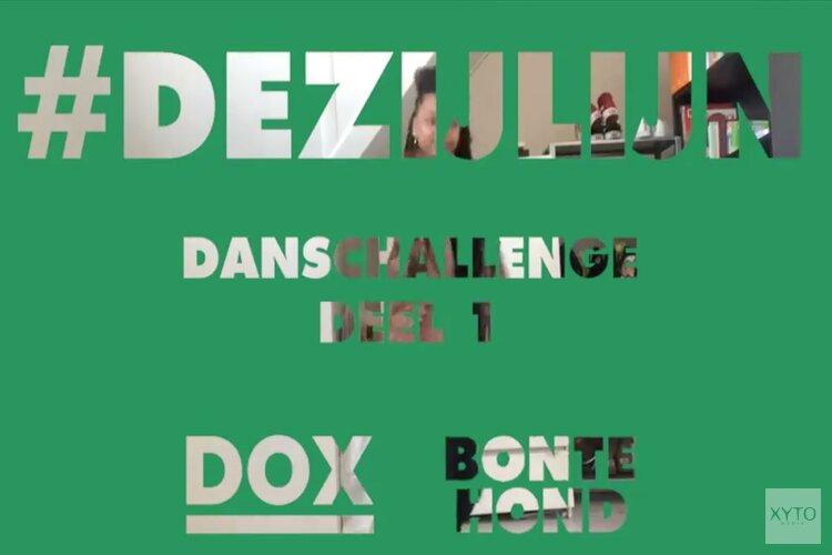 Samen aan DE ZIJLIJN met BonteHond en DOX