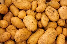 Duizenden kilo's aardappels te redden op Nationale Aardappelberg Dag in Almere en Lelystad.