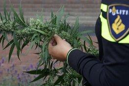 Politie rolt hennepkwekerij op in Bloemenbuurt