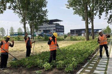 Bijzondere bomen- en planten bibliotheek op Floriade bijna klaar