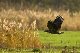 Oktober Wandelmaand in nationaal park Nieuw Land